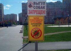 Таблички о коронавирусе игнорируют в Московском микрорайоне