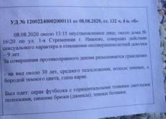 Изнасилование девочки в Иванове: было или нет