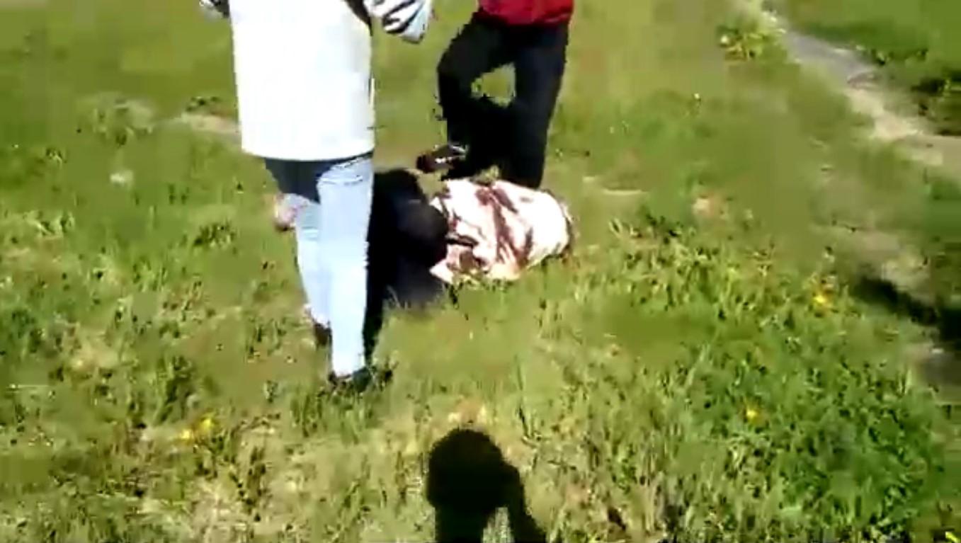 В Родниках избили девочку: последние подробности