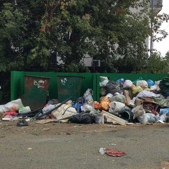 Свалка опасных отходов выявлена у площади Пушкина в Иванове