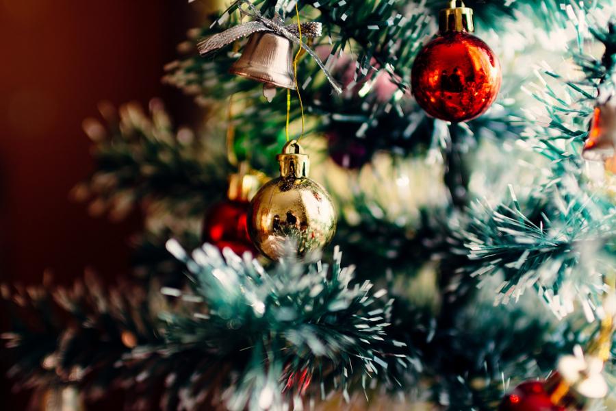 Праздник к нам приходит: шуйчанин в Родниках попытался украсть елку