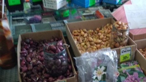 Продажа семян на особом контроле