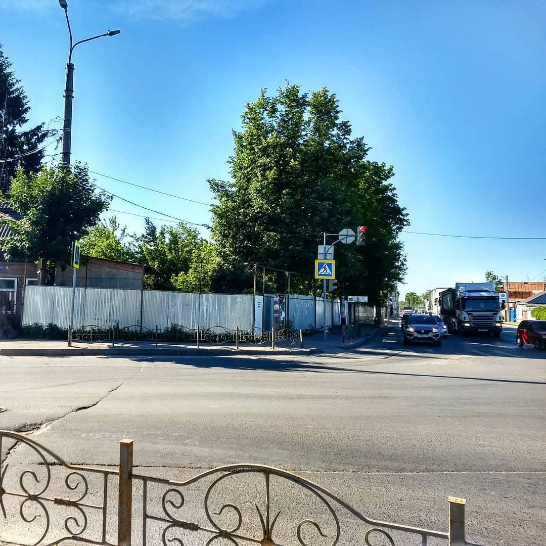 Мэрия после обращения «Иваново37» очистила от веток светофор