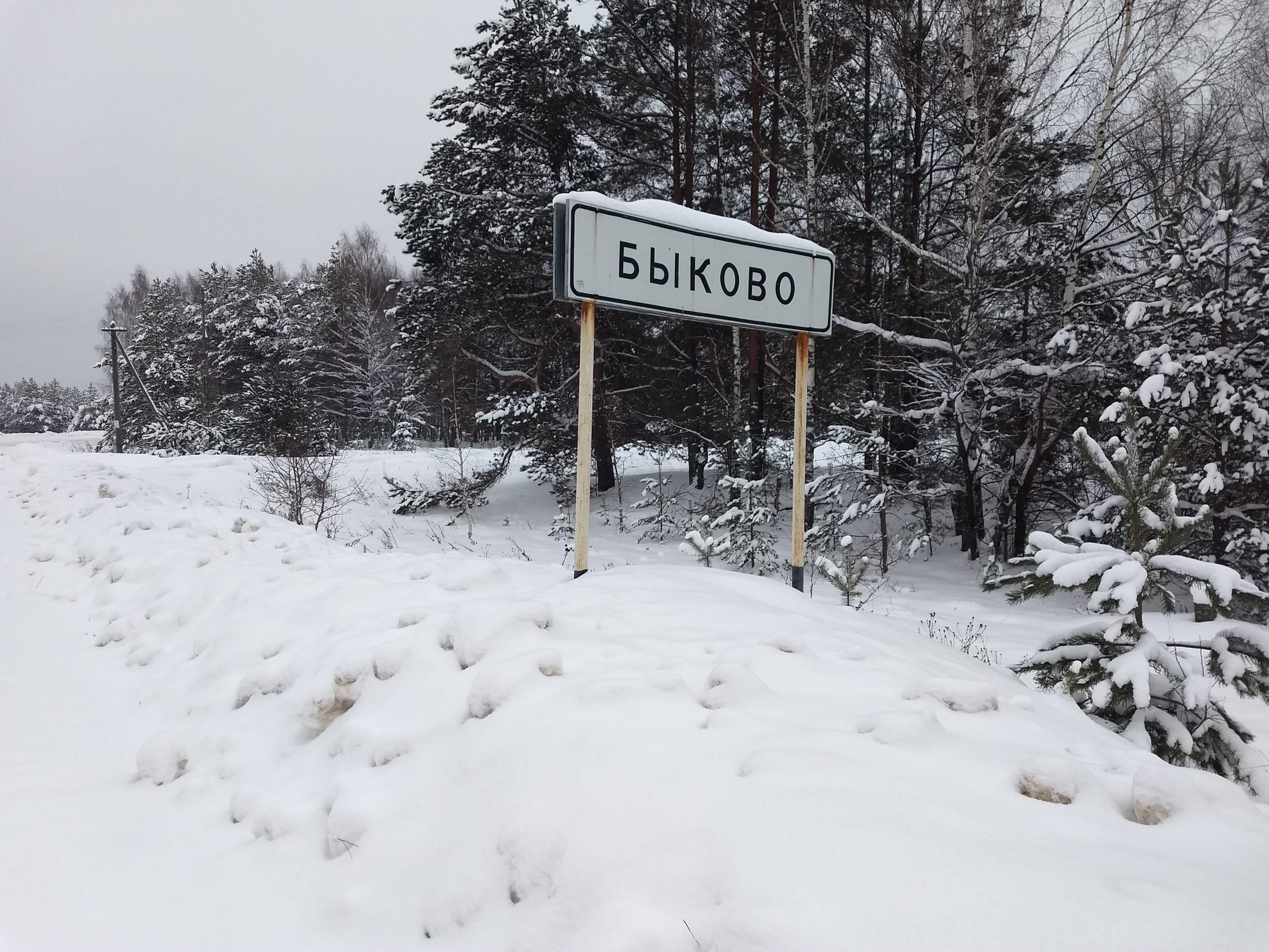 Жителя деревни Быково Лухского района будут судить за убийство брата