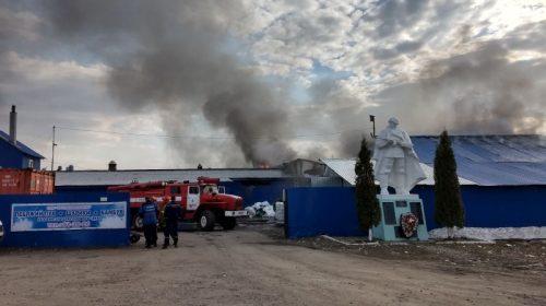 Причиной пожара Меланжиевом комбинате мог стать пал прошлогодней травы