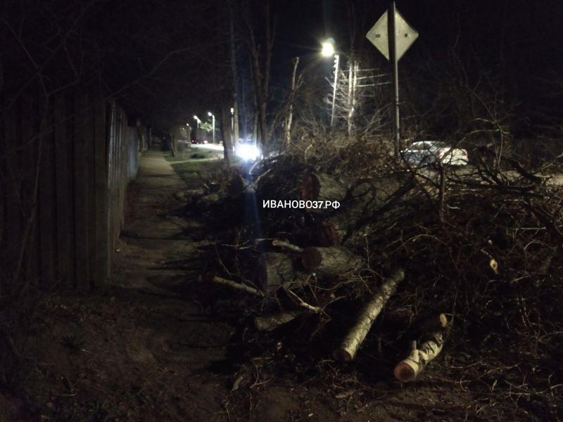 На Генерала Белова неизвестные незаконно уничтожили деревья