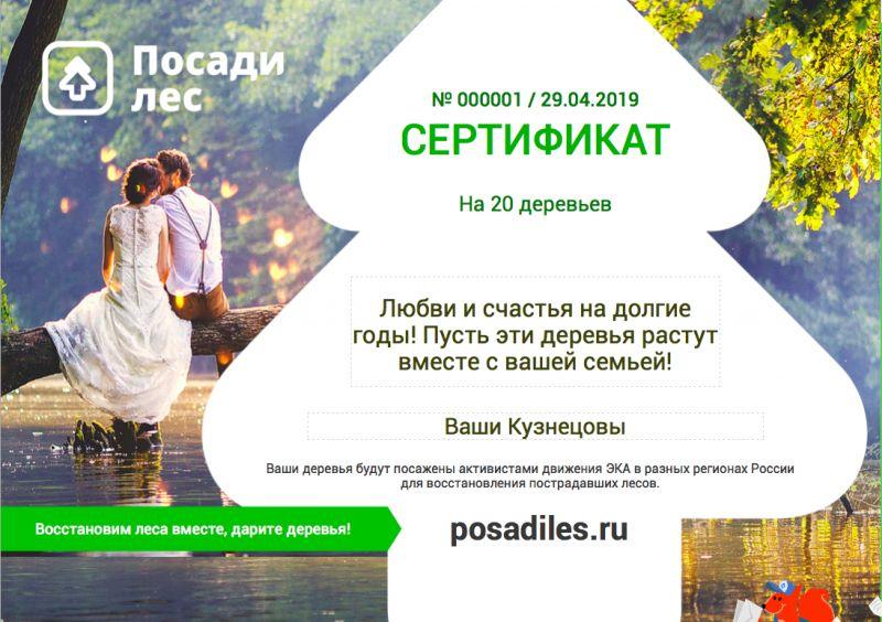 На свадьбу можно подарить лес