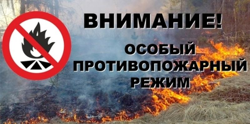 На территории Ивановской области с 25 апреля вводится особый противопожарный режим