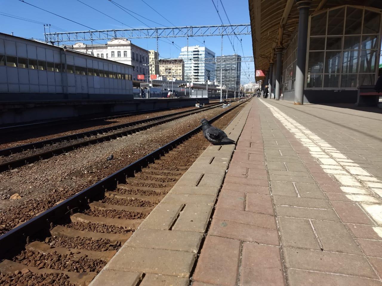 Поезд Иваново — Санкт-Петербург изменил график движения