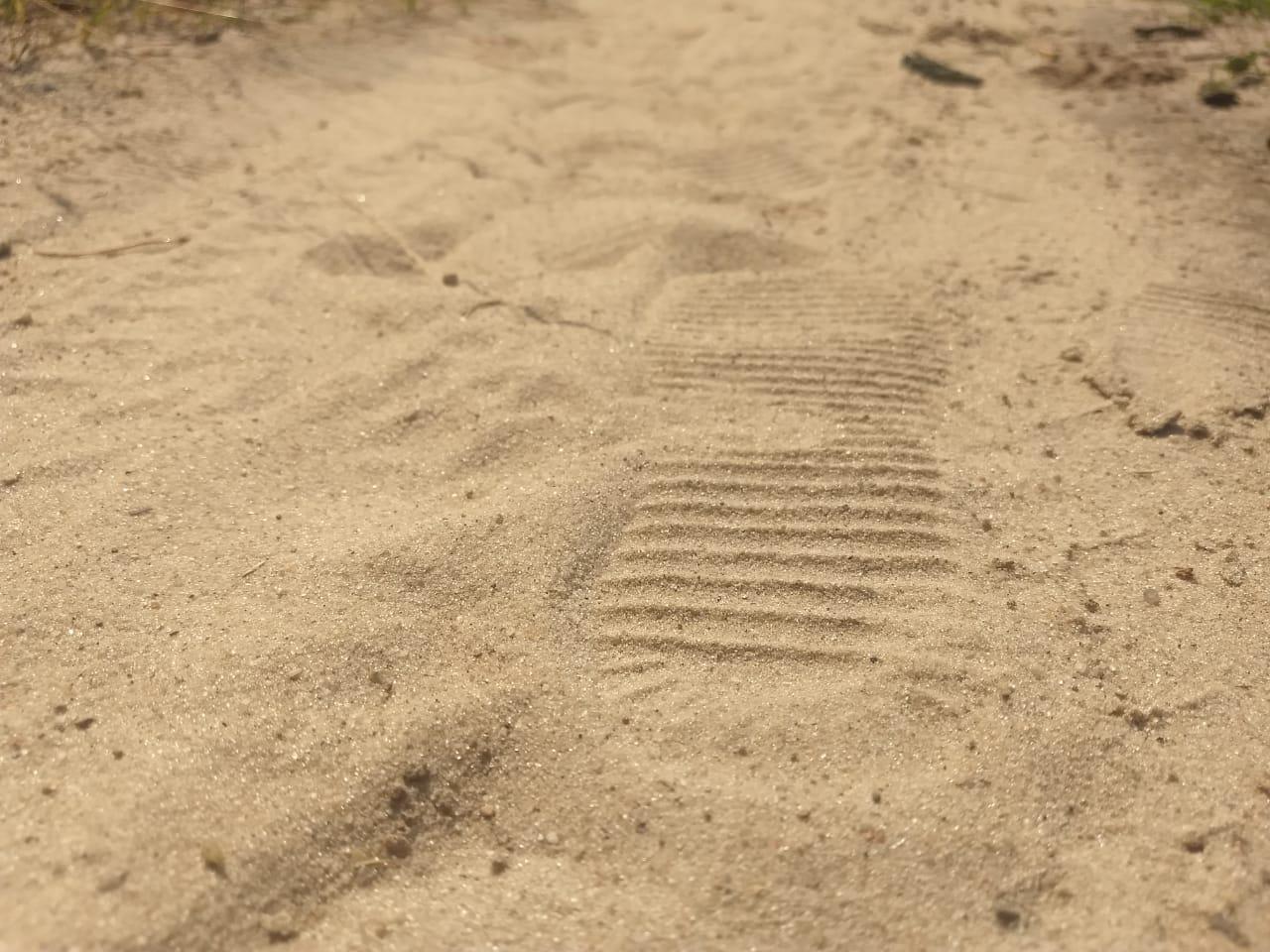 Можно ли в Иванове гулять в парках: ограничения сняты с 22 июля