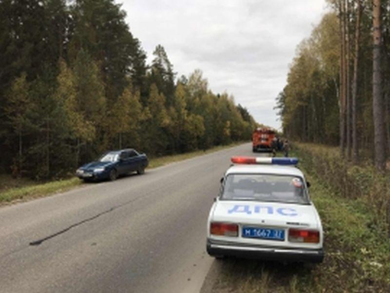 В Шуйском районе произошла авария с участием автомобиля, мотоцикла и лося