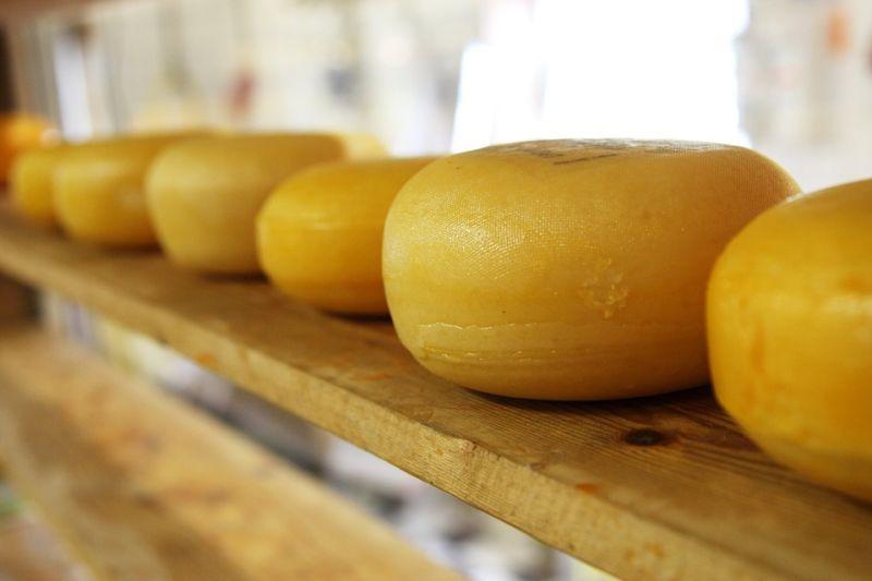 В субботу в Иванове пройдет «Фестиваль сыра»