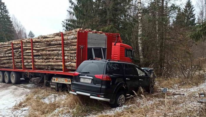 Лесовоз на трассе Ростов-Иваново-Нижний протаранил кроссовер: один человек погиб