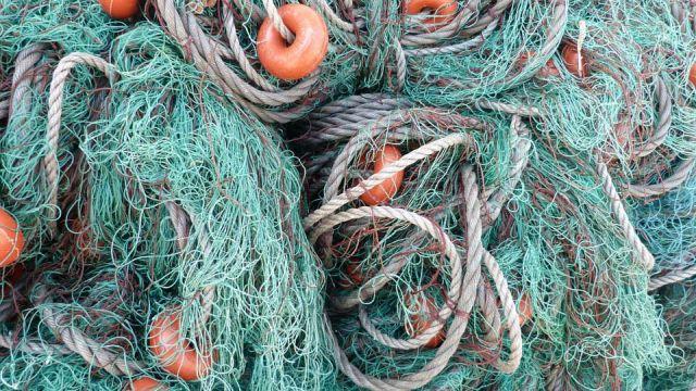 Жителя Комсомольского района осудили за незаконную ловлю рыбы