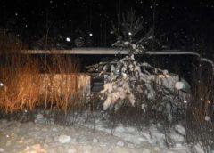 В Пестяковском районе за рулем заказного автобуса умер водитель