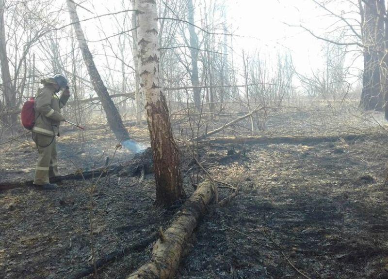 В Гаврилово-Посадском районе три часа тушили лесной пожар